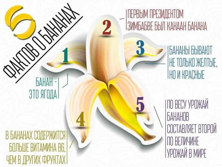 банановая диета основы