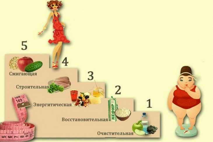 диета лесенка меню на 5 дней отзывы